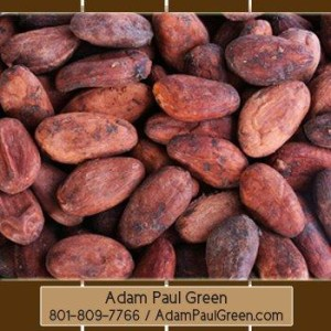 cooperative_Xocai_Mxi_Corp_AdamPaulGreen_Raleigh_North Carolina_NC_HealthyChocolate_83