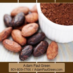 handsome_Xocai_Mxi_Corp_AdamPaulGreen_Santa Fe_New Mexico_NM_HealthyChocolate_31