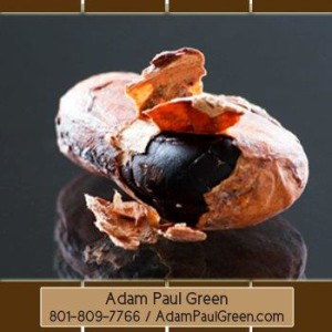 sparkling_Xocai_Mxi_Corp_AdamPaulGreen_Richmond_Virginia_VA_HealthyChocolate_46